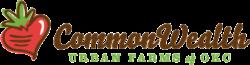 commonwealth-logo-web
