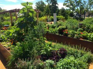 MBG Children's Garden 1